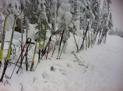 skis lined up